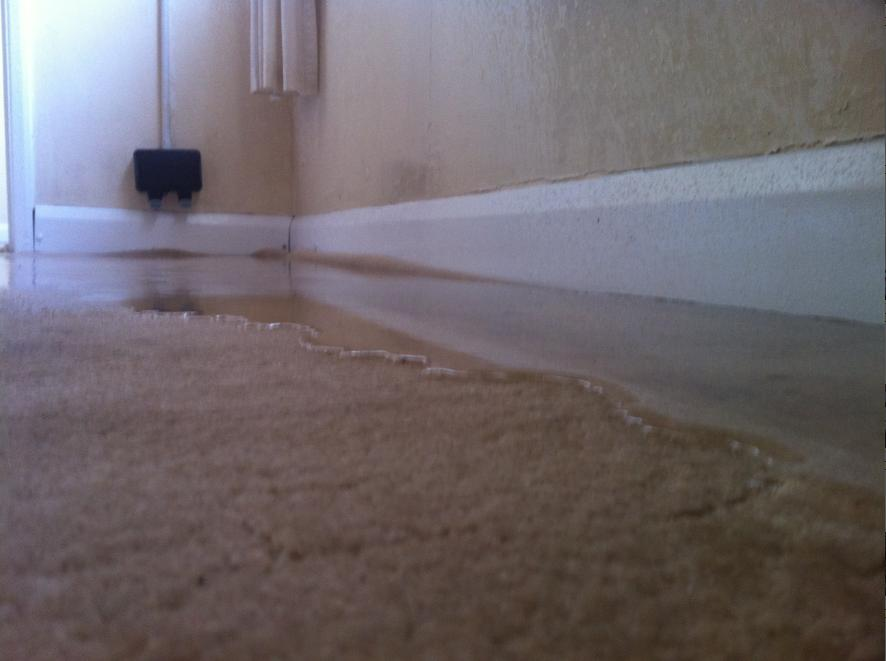 wet carpet 300x223 drying a water damaged property days 1 2