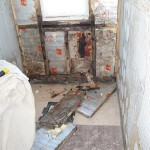 Mouldy Timber & Water Damage