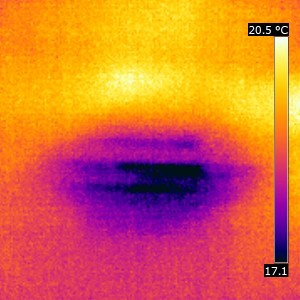 Thermal Imaging Damp Survey